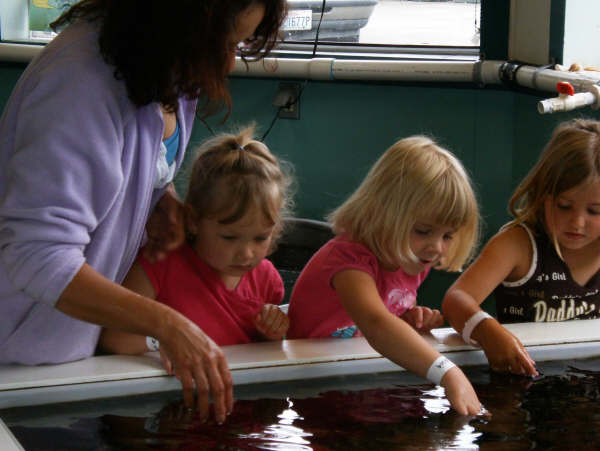 Banbury Preschool Field Trip to the Marine Lab